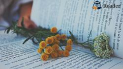 Top 5 cuốn sách hay về yêu thương bản thân