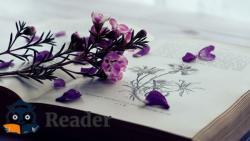 5 cuốn sách hay nhất về thanh xuân ngập tràn ký ức tuổi trẻ