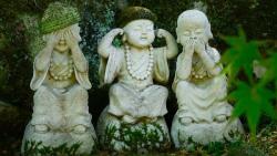 Những trích dẫn sách hay mang tư tưởng Phật giáo giúp cuộc đời an yên