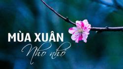 Mùa xuân nho nhỏ - mang cả mùa xuân xứ Huế vào trong thơ ca
